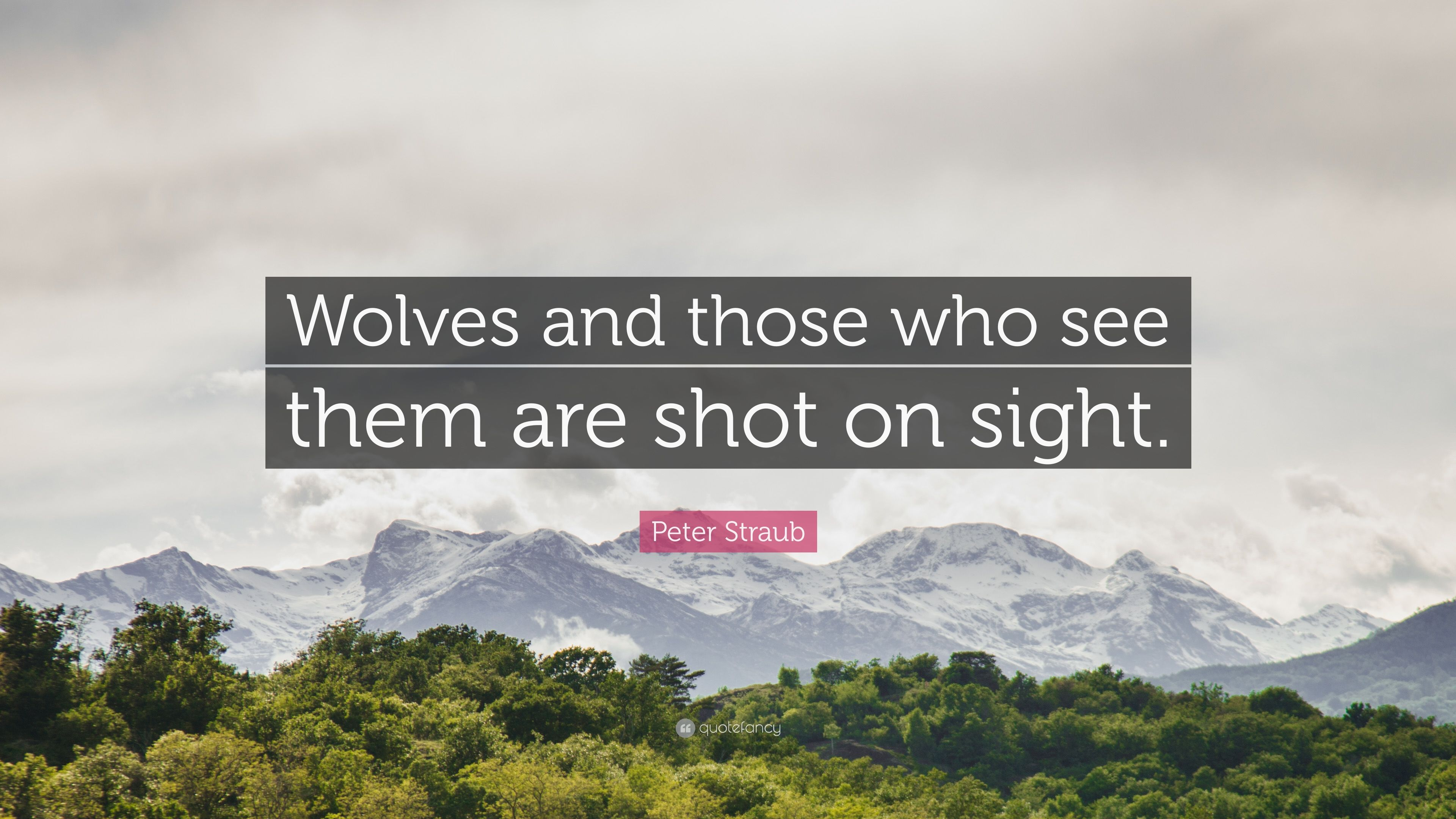 3371934-Peter-Straub-Quote-Wolves-and-those-who-see-them-are-shot-on-sight.jpg